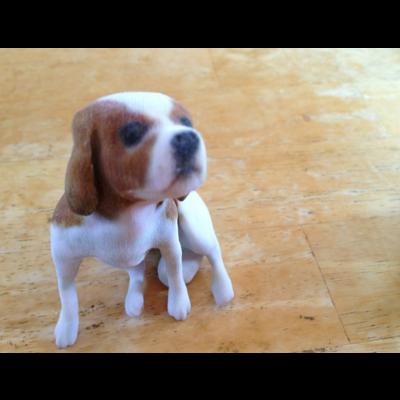 3D animal printing