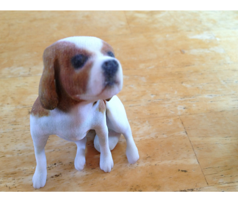 3D animal printing – get a perfect model of your pet
